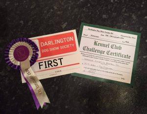 darlington-2016