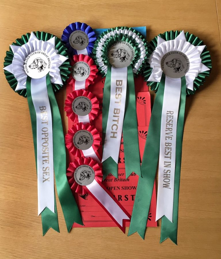 Rosettes from WCGB April 2018
